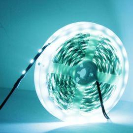 14.4W IS-blå LED 5050 SMD Rope Light, 60 LED/m,: 5m, bredde 10mm